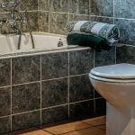 toilette écologique à faible débit